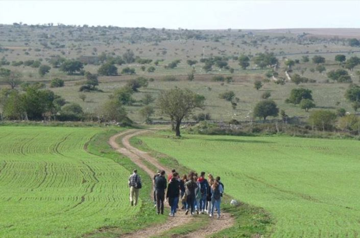 INVITO ALLA DEFINIZIONE PARTECIPATA DELLA STRATEGIA PER L'AREA INTERNA DELL'ALTA MURGIA: SCUOLA