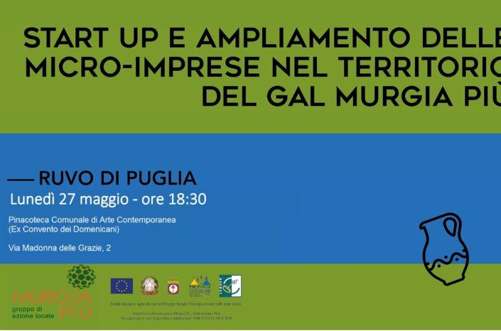 Start Up e ampliamento delle micro - imprese nel territorio del GAL Murgia Più -  Ruvo di Puglia 27/05/2019